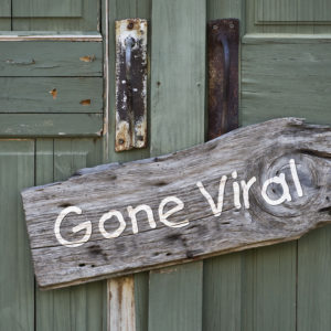 "A B&B's turquoise wooden door with a ""gone viral"" sign on it"