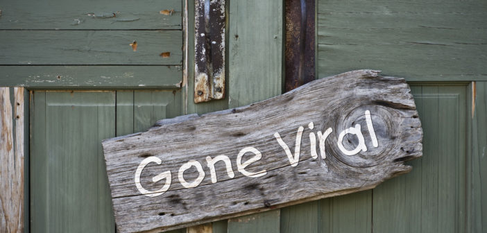"""A B&B's turquoise wooden door with a """"gone viral"""" sign on it"""