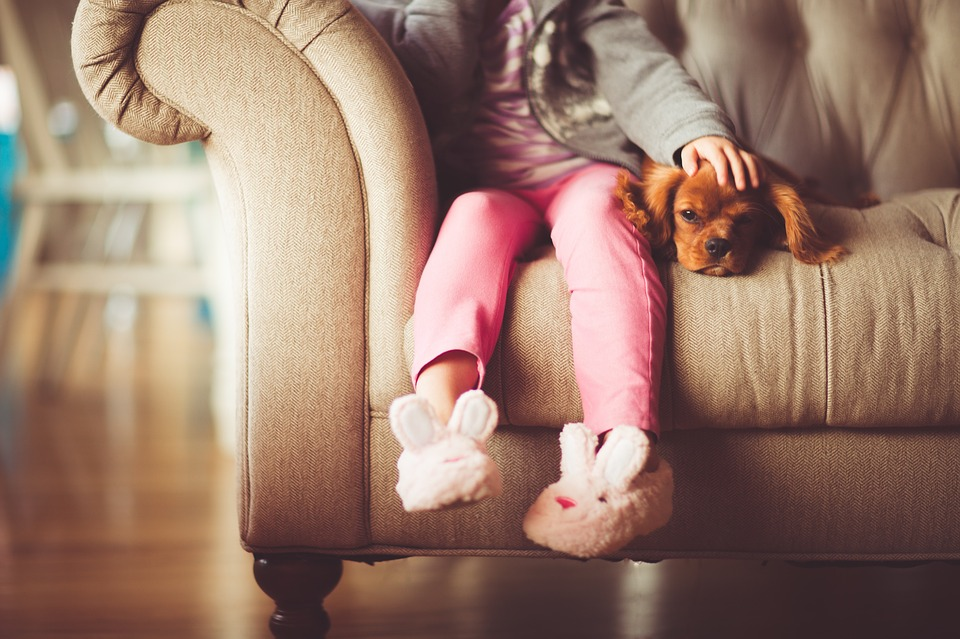 a little girl's legs hang from a couch next to her dog