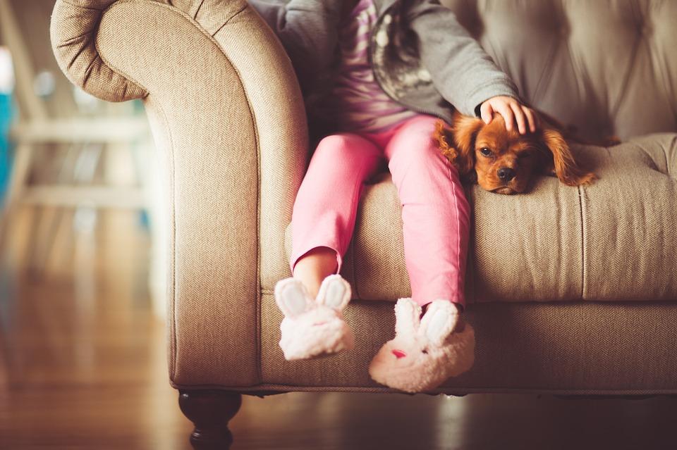 jambes d'une petite fille sur un canapé, à côté de son chien