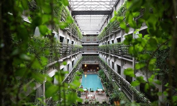 Piscina de un hotel ecológico rodeada de plantas