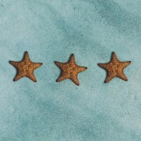 Tre stelle marine sulla sabbia, simili alle stelle degli hotel