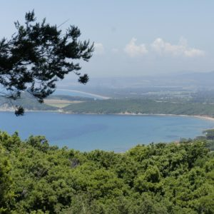 Panorama costiero Maremma